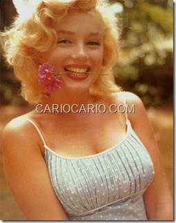 Marilyn Monroe (24)