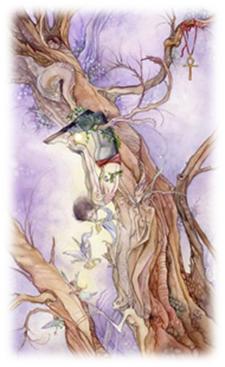 Arcano XII. Tarot Shadowscape