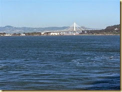 20140428_sailaway bay bridge (Small)
