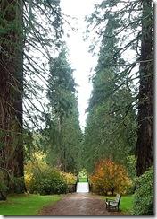 bemore garden entrance