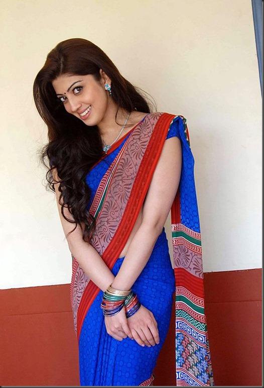 pranitha_in_saree_photo