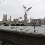 England-London (73).jpg