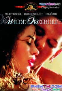 Lan Rừng - Wild Orchid