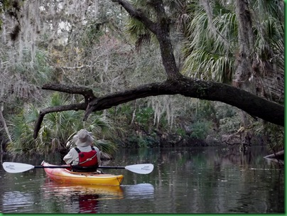 Hillsborough River Paddle (60)