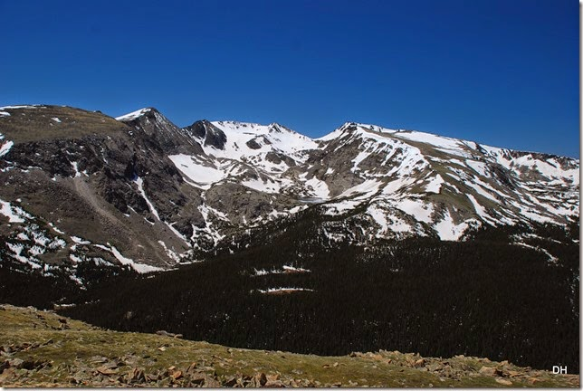 06-19-14 A Trail Ridge Road RMNP (159)