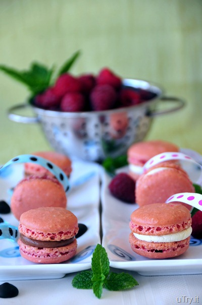 Raspberries Macarons with Dark Chocolate Buttercream and Vanilla Bean Buttercream