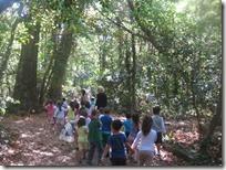 εκδρομή στο δάσος (2)