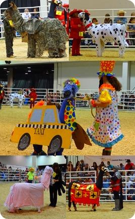 Houston Livestock show1
