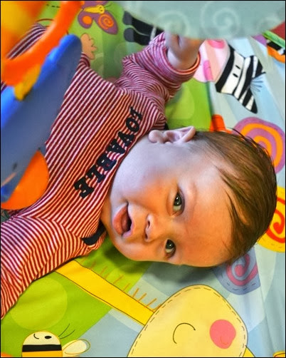 Baby Doc 11 weeks old