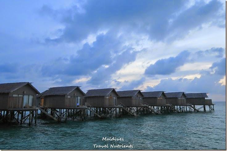馬爾地夫 Centara渡假村 (55)