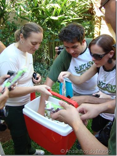 Picolés Parque das Aves Foz do Iguaçu BlogTurFoz