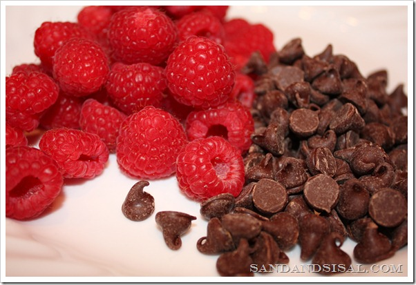 raspberries chocolate