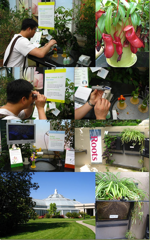 2011-07-02 Huntington Library5