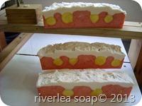 Soap Logs2