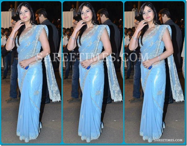Zarine_Khan_Blue_Embroidery_Saree