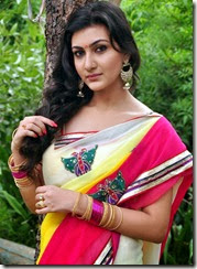 neelam_upadhyay_beautiful_in saree_photos