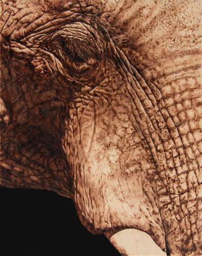 Elephant-Portrait