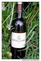 guiraud_g_2011