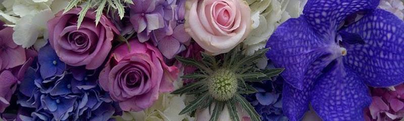 269147_183073275088604_8323206_n laura kuy flowers e
