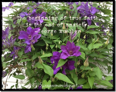 clematis w true faith quote