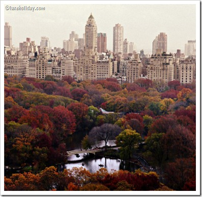 New-York-City-Fall_2