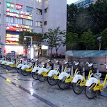 bicycle rentals in downtown Seoul in Seoul, Seoul Special City, South Korea