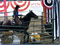 9774 Alberta Calgary Stampede 100th Anniversary - Cowboy Up Challenge Scotiabank Saddledome