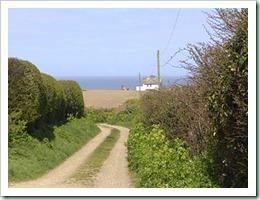 weybourne-country-lane