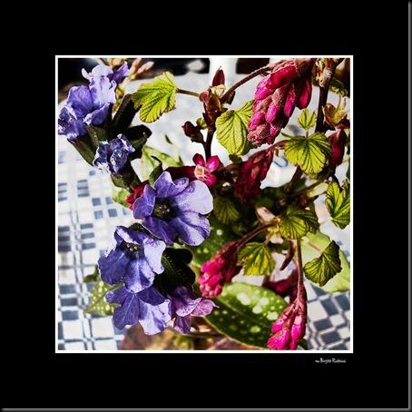 pm_20120415_blom