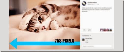 Fotografía publicada en Google+, apareciendo a dos columnas, con el texto y los comentarios en la tercera columna restante.