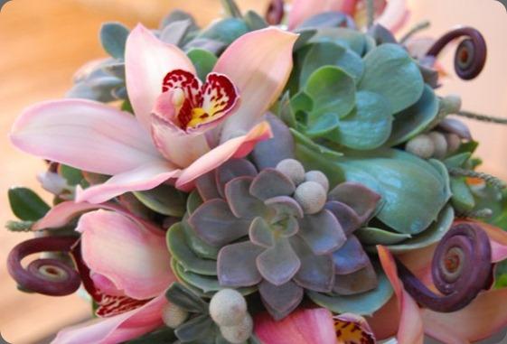 17237_290628410956_7418148_n flora bella