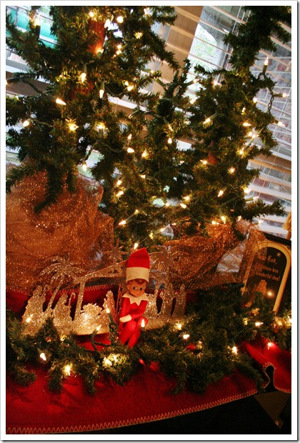 Christmastime begins 2011 081