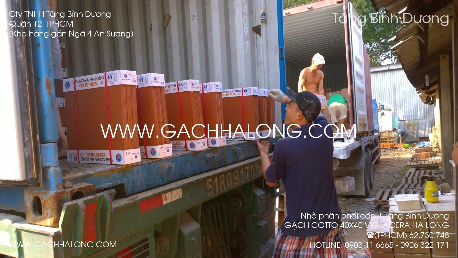 gach cotto 400x400 mm viglacera Ha Long