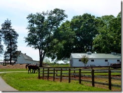 Tanglewood Park Stables
