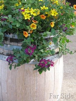 Flowers at Black Swan Cooperage