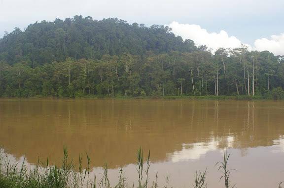 La Kinabatangan et la colline de Pangui. Sukau, 13 août 2011. Photo : J.-M. Gayman