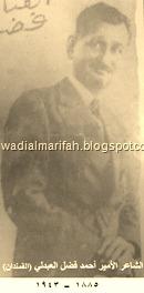 الشاعر الأمير القمندان (2)