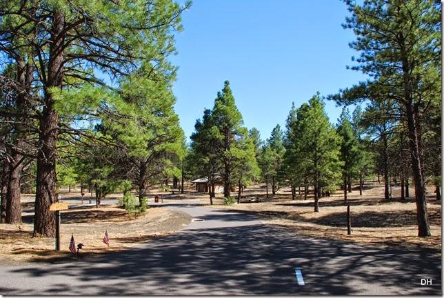 05-05-14 B Bonita Campground (4)