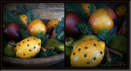 xmas fruit collage ARLH