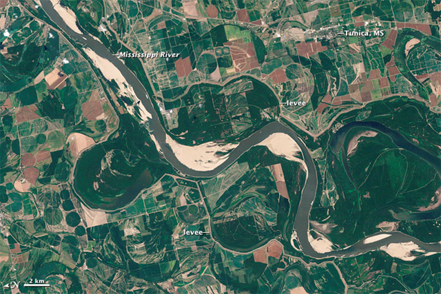 Landsat 7 captured this image of a stretch of the Mississippi river just south of Memphis, Tennessee on 8 August 2012. The water was several feet below the historic normal stage for Memphis, and many sandbars were newly exposed or greatly expanded. The low water levels followed record-setting temperatures and dry weather. By the end of July, 63 percent of the contiguous United States was in drought, affecting both crops and water supplies. NASA Earth Observatory image created by Jesse Allen and Robert Simmon, using Landsat data provided by the United States Geological Survey