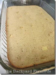 baked apple cinnamon pancake - The Backyard Farmwife