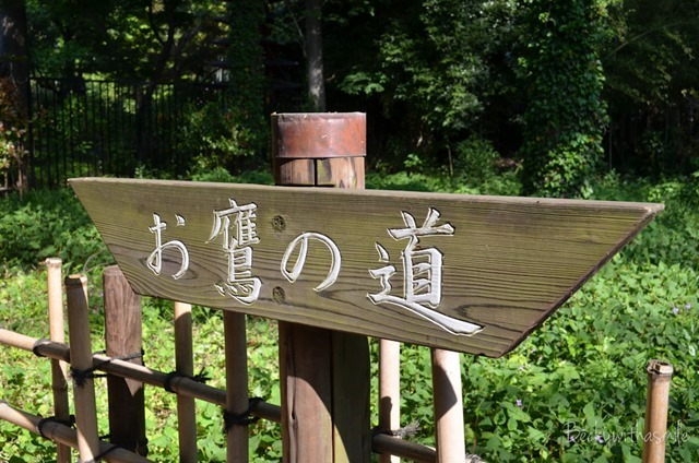 2013-05-08 Tokyo 005