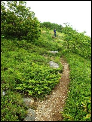 Ocean hike Camden Hills 081