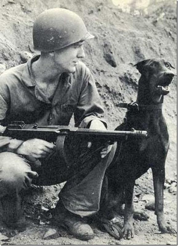 Soldados e animais de estimação (39)