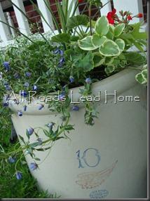 Planting Flowers 036