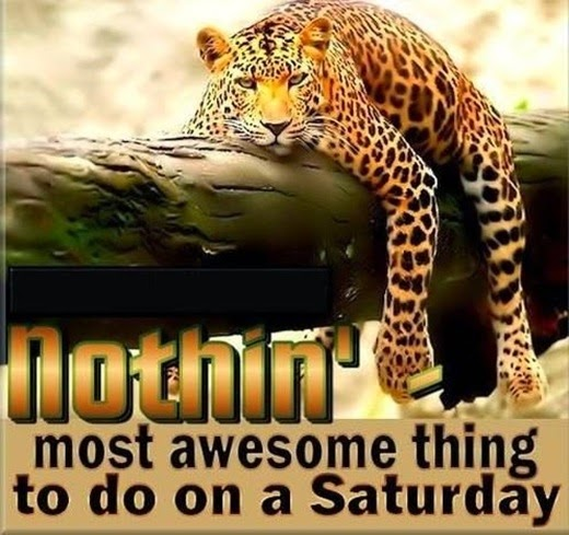 68799-Most-Awesome-Thing-To-Do-On-Saturday