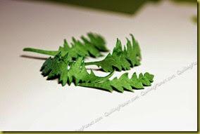 Листья для маков