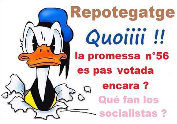 Lenga promessa n°56 Socialista