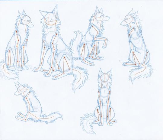 Desenhando lobos Part 5