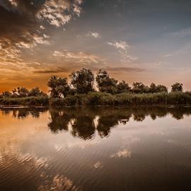 Into the sunrise  by Dana Nitzoy - Landscapes Sunsets & Sunrises